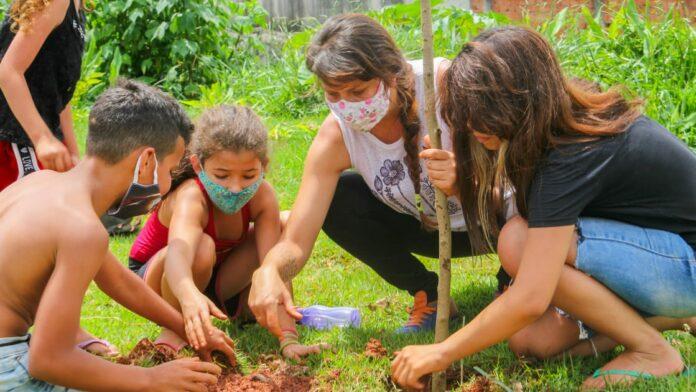 Ambientalista do PCdoB transforma número de votos em árvores na cidade de Mauá